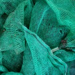 green netting