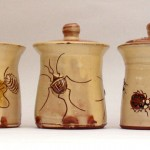 Small jars with bugs